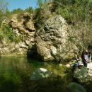 Niu de l'Àliga, Alcover, a Muntanyes de Prades