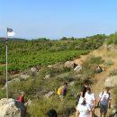 Walking and wine tourism in Cornudella, Priorat