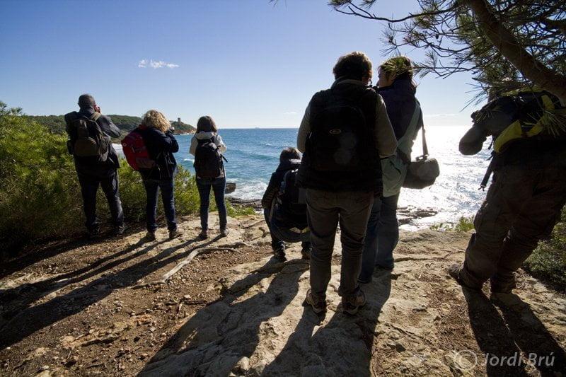 Bosc de la Marquesa, Tarragona