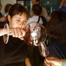 Tasting wines in Priorat of Montsant appellation of origin