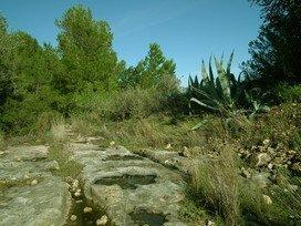 Pratdip old path, in Mont-roig