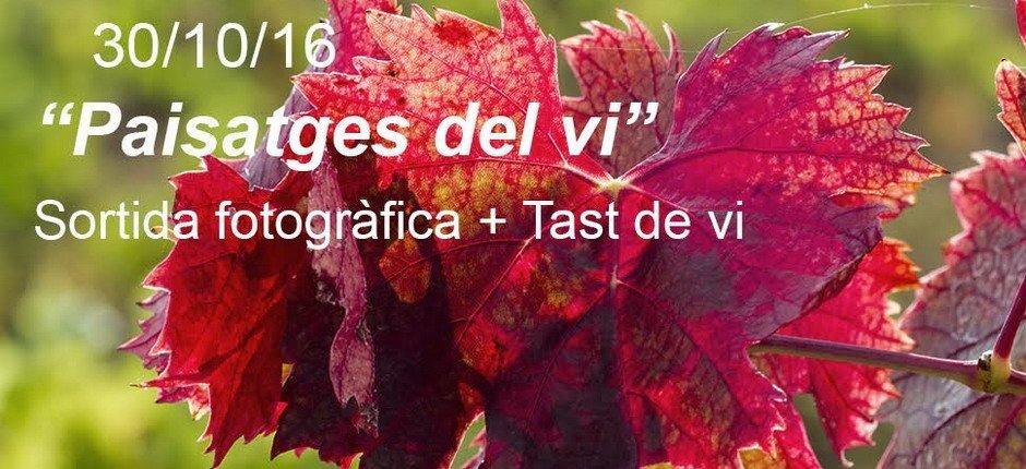 Excursió fotografia Priorat tast de vi