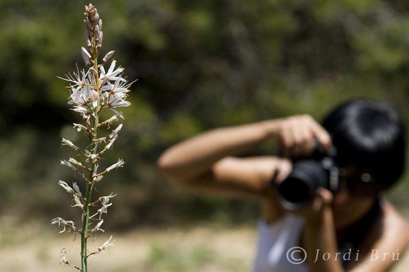 Excursió fotogràfica Al Detall