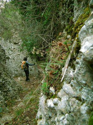 Senderisme a Montsant