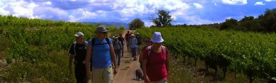 VACANCES SETMANA SANTA 2014: Senderisme per Muntanyes de Prades i Enoturisme en 3 DO (Priorat, Montsant i Terra Alta)