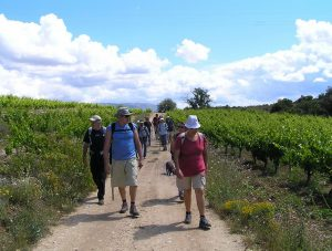 Walking and wine tourism holiday in Priorat