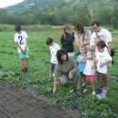 Getting to know the flora in the Pyrenees