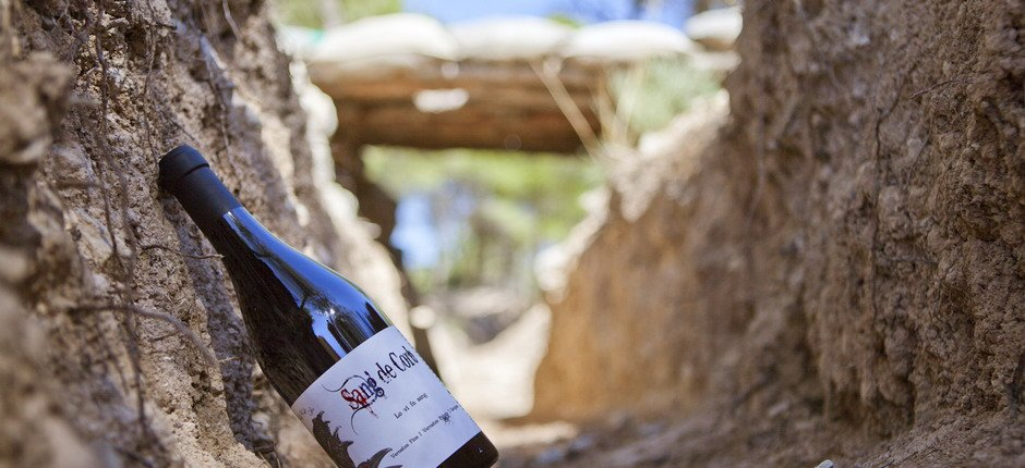 Nature, wine and culture in the civil war trenches
