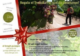 Val regal enoturisme Priorat